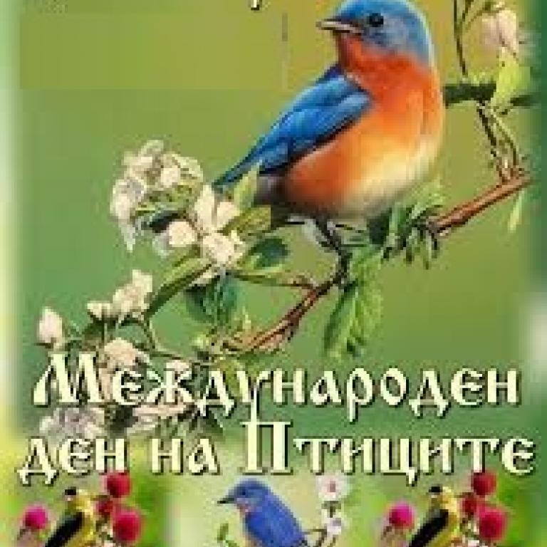 снимка за новина - Международен ден на птицата